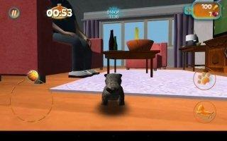 Cat Simulator Скриншот 9
