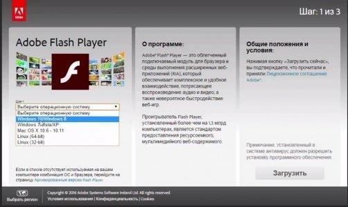 Adobe Flash Player для Windows - Скриншот 5