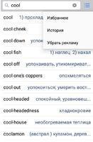 English-Russian Dictionary Скриншот 6
