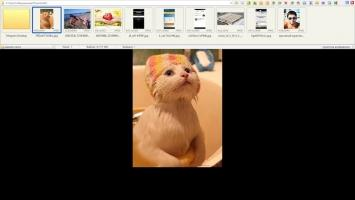 FastStone Image Viewer Скриншот 3