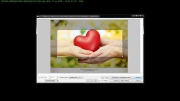 FastStone Image Viewer Скриншот 7